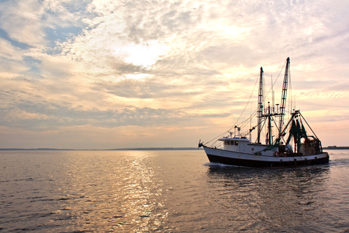 The 10 most dangerous jobs in america risk management for Commercial fishing jobs