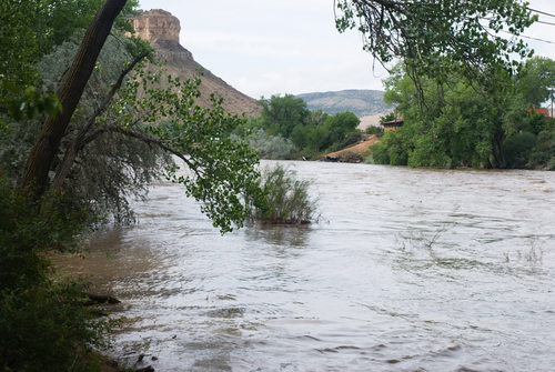 Colorado River at Flood Level